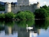 ireland_rosscastle_killarney